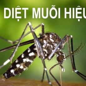 cách diệt muỗi hiệu quả