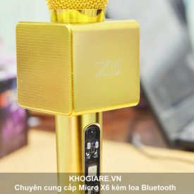 mic-x6